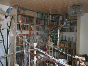 Vogelwohnzimmer1