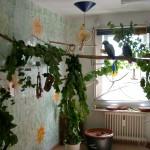 Papageienzimmer