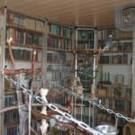 Vogelzimmer 3klein