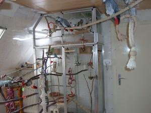 Vogelwohnzimmer2